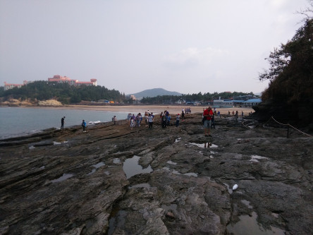 falaises et plage
